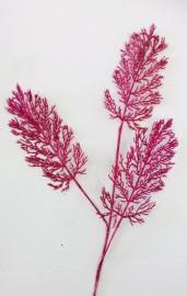 Pink Fern 70cm