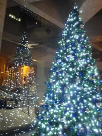 3 meter Tree