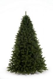 SIBERIAN SPRUCE 210 cm